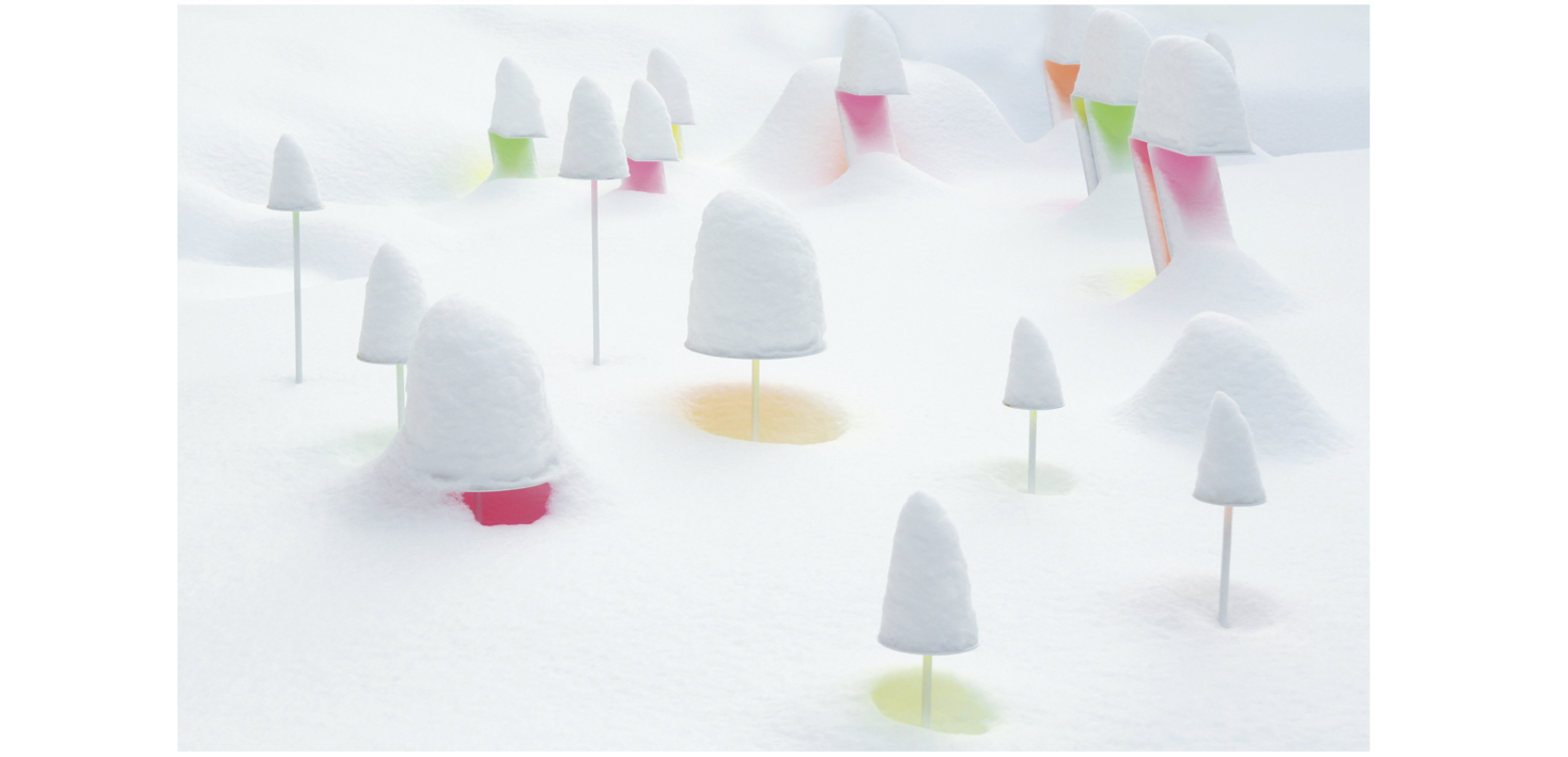 SNOW PALLET 12