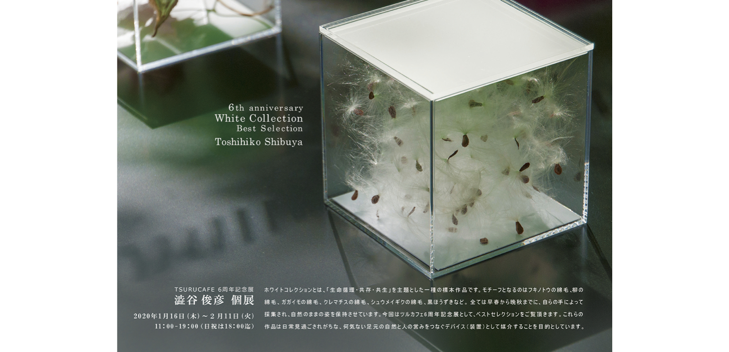 澁谷俊彦 個展『White Collection Best Selection』